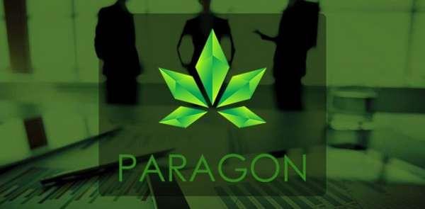 Простыми словами о монете Paragon