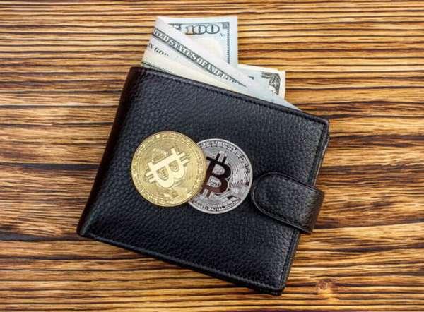 кошелек для криптовалюты на русском языке