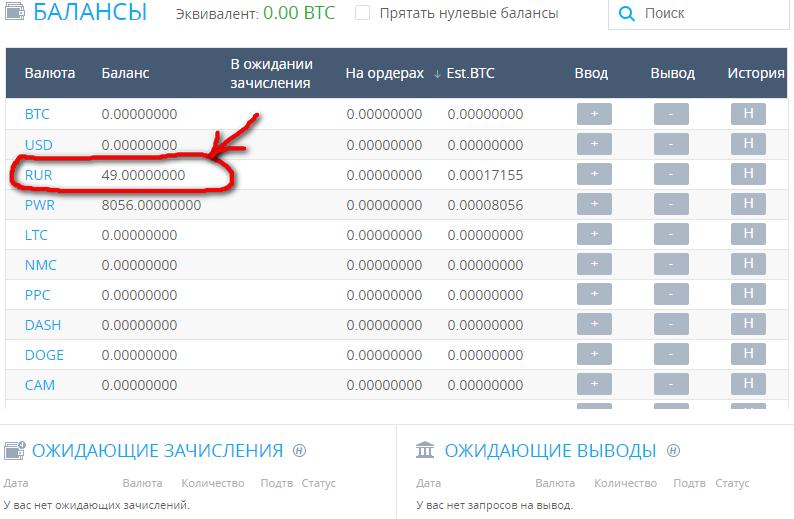 Зачислено 49 рублей