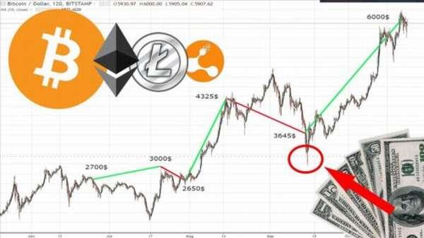 как и на какой бирже торговать криптовалютой