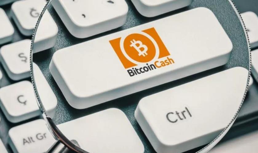 программы для майнинга Bitcoin Cash