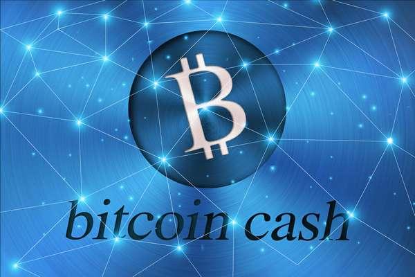 соло майнинг Bitcoin Cash